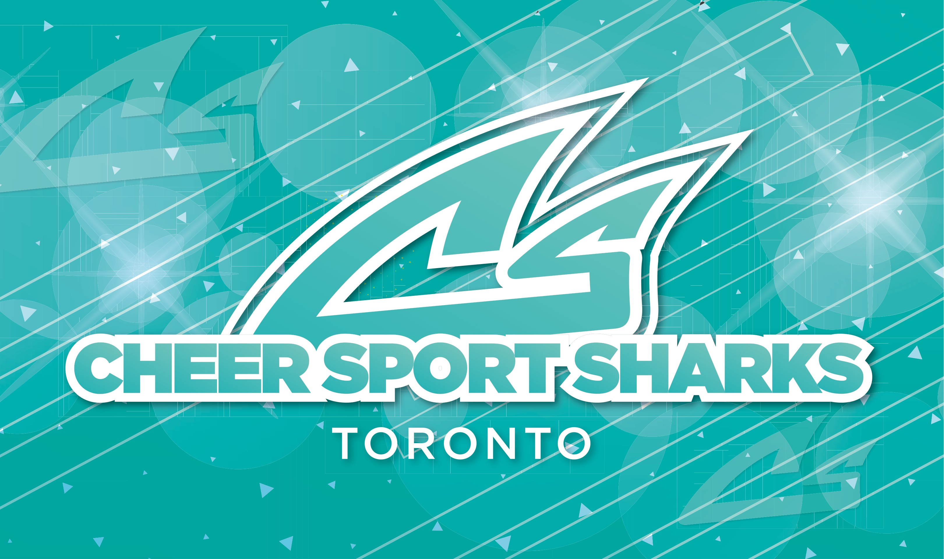 SMALL Cheer Sport Sharks Toronto Banner 16Hx27W 01