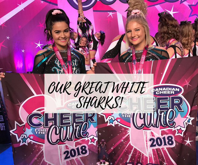 Cheer Sport Great White Shark FB